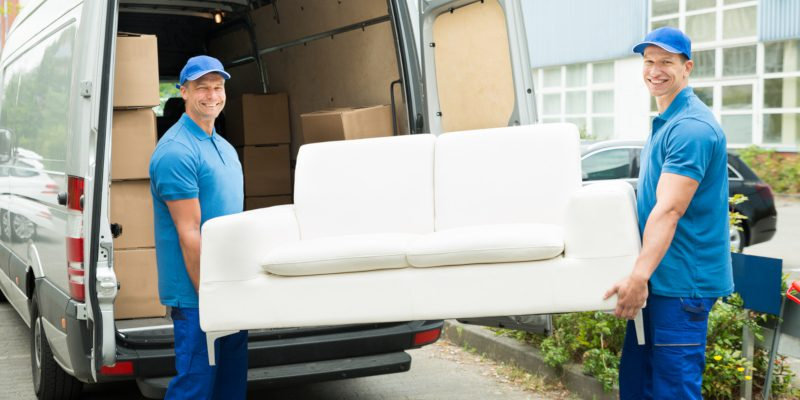 professional movers and moving services
